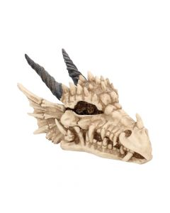 Dragon Skull Box 20cm Skulls Skulls Value Range