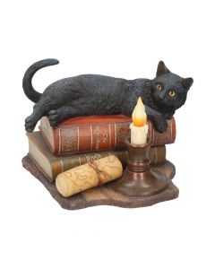 The Witching Hour (LP) 20.5cm Cats Lisa Parker Figurines Artist Collections