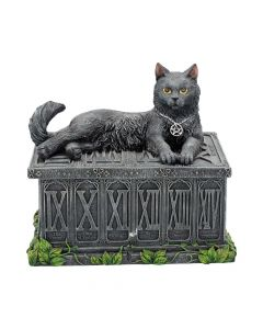 Fortune's Watcher Tarot Box 17cm Cats NN Designs Premium Range