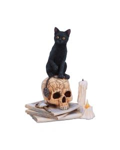 Spirits of Salem (LP) 16.5cm Cats Gift Ideas Artist Collections
