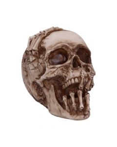 Breaking Out Skull (JR) 20cm Skulls New Product Launch Artist Collections