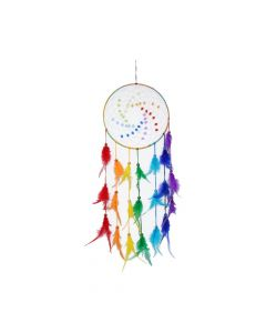 Dream Spectrum 20cm Indéterminé Dreamcatchers Premium Range