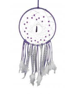 Purple Purity 20cm Indéterminé Dreamcatchers Premium Range