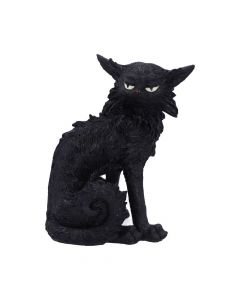 Salem (Small) 19.6cm Cats New in Stock Premium Range