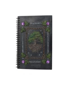 Dream Book (21cm) Witchcraft & Wiccan NN Designs Premium Range