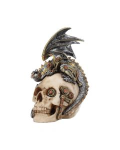 Steel Wing Skull 21cm Dragons Steampunk Dragons Value Range