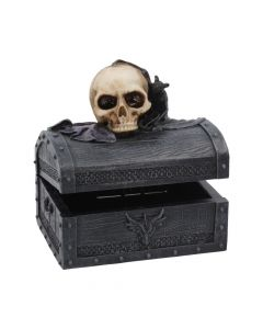 Dark Shroud 15.5cm Skulls Skulls Value Range