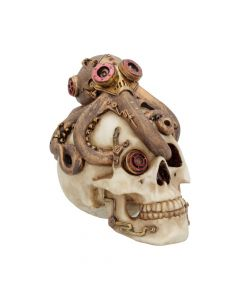 Octo Craniotomy 15.5cm Skulls Steampunk Value Range