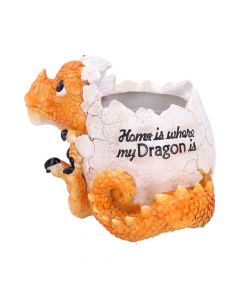 Home is Where My Dragon is Pot 16cm Dragons Easter Value Range