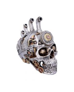 Pipe Dream 20.5cm Skulls Steampunk Value Range
