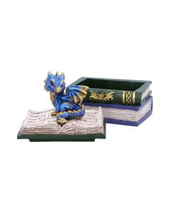Dragonling Diaries (Blue) 11.3cm Dragons Realm of Dragons Value Range