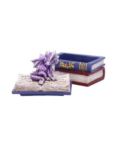 Dragonling Diaries (Purple) 11.3cm Dragons Realm of Dragons Value Range