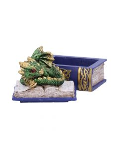 Bedtime Stories (Green) 8cm Dragons Realm of Dragons Value Range