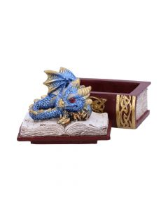 Bedtime Stories (Blue) 8cm Dragons Realm of Dragons Value Range