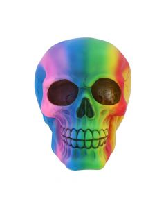 Rainbow 15.5cm Skulls Skulls Value Range