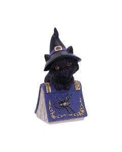 Pocus 12.7cm Cats Coven Keepers Value Range