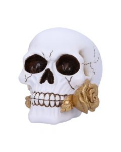 Floral Fate 17.5cm Skulls New Product Launch Value Range