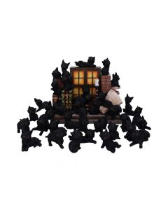 The Witches Litter 24.8cm (Display of 36) Cats New Arrivals Value Range