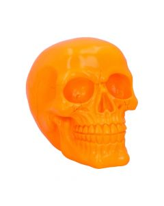 Psychedelic Skull Orange 15.5cm Skulls New in Stock Value Range