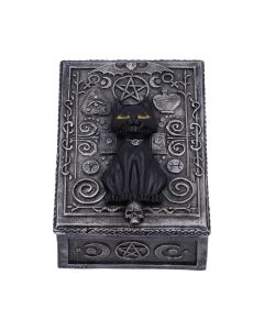 Familiar Spell Box 13.7cm Cats New Product Launch Value Range