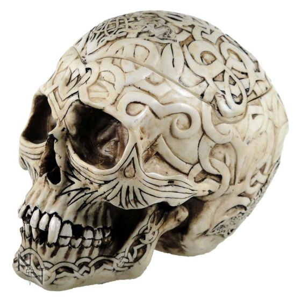 Celtic Skull Box 20cm Skulls Skulls (Premium) Premium Range