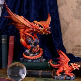 Adult Fire Dragon (AS) 24.5cm