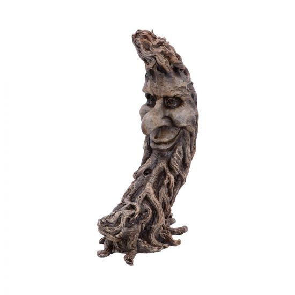 Moon Oak 25.7cm Tree Spirits Tree Spirits Premium Range