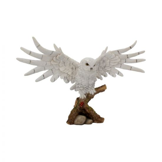 Snowy Rest 38cm Owls De retour en stock Value Range